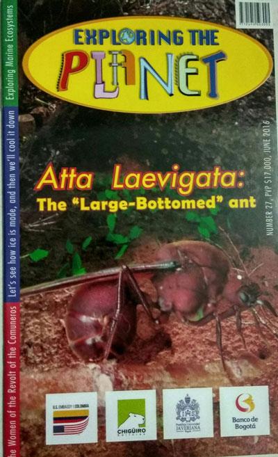 portada-ed-27-hormiga