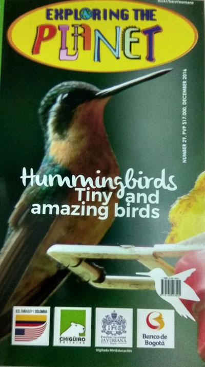 portada-ed-29-colibri